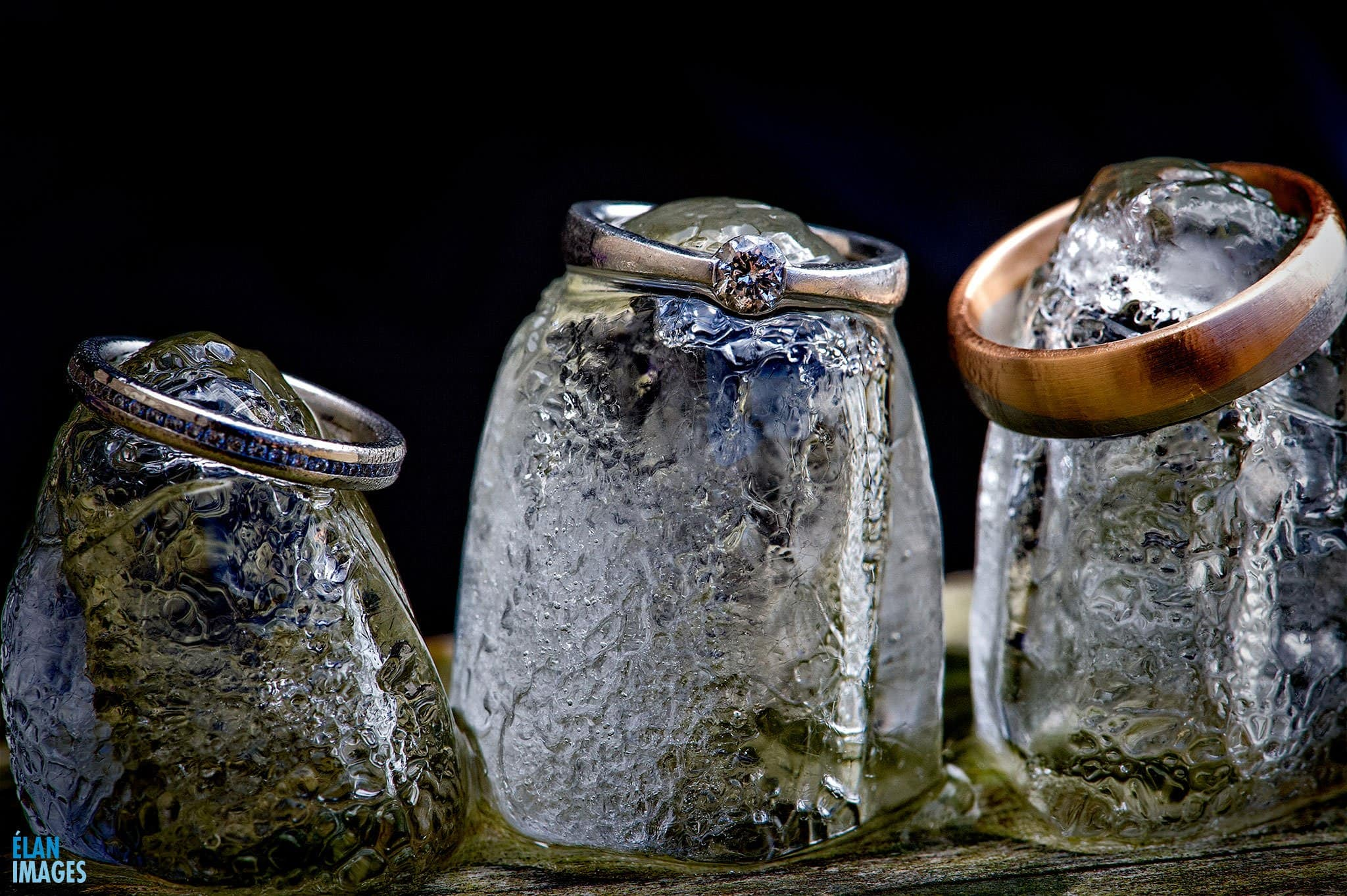 Weding Rings photographed on Ice Cubes at Folly Farm centre