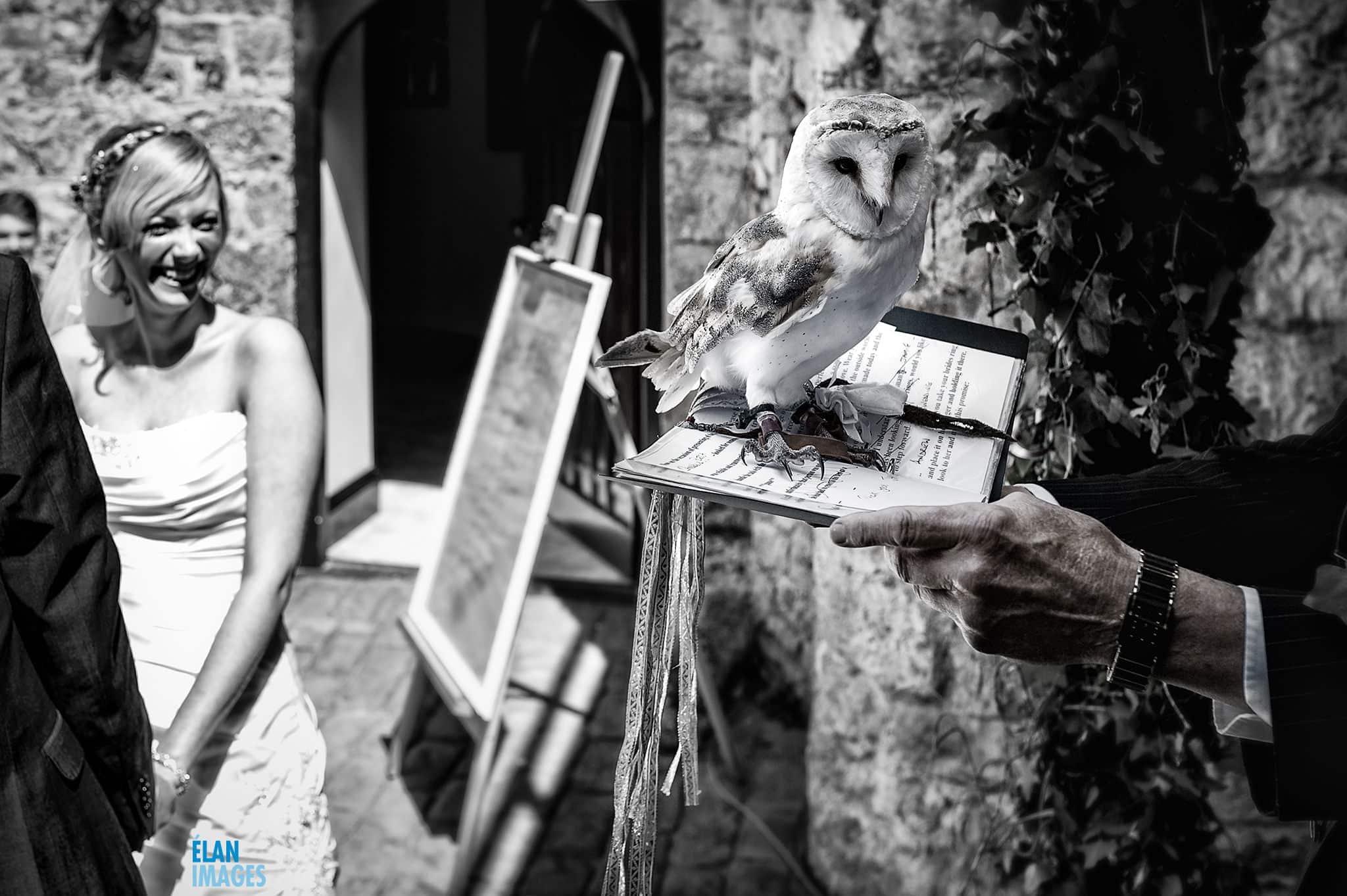 Wedding at Banwell Castle, Somerset 6