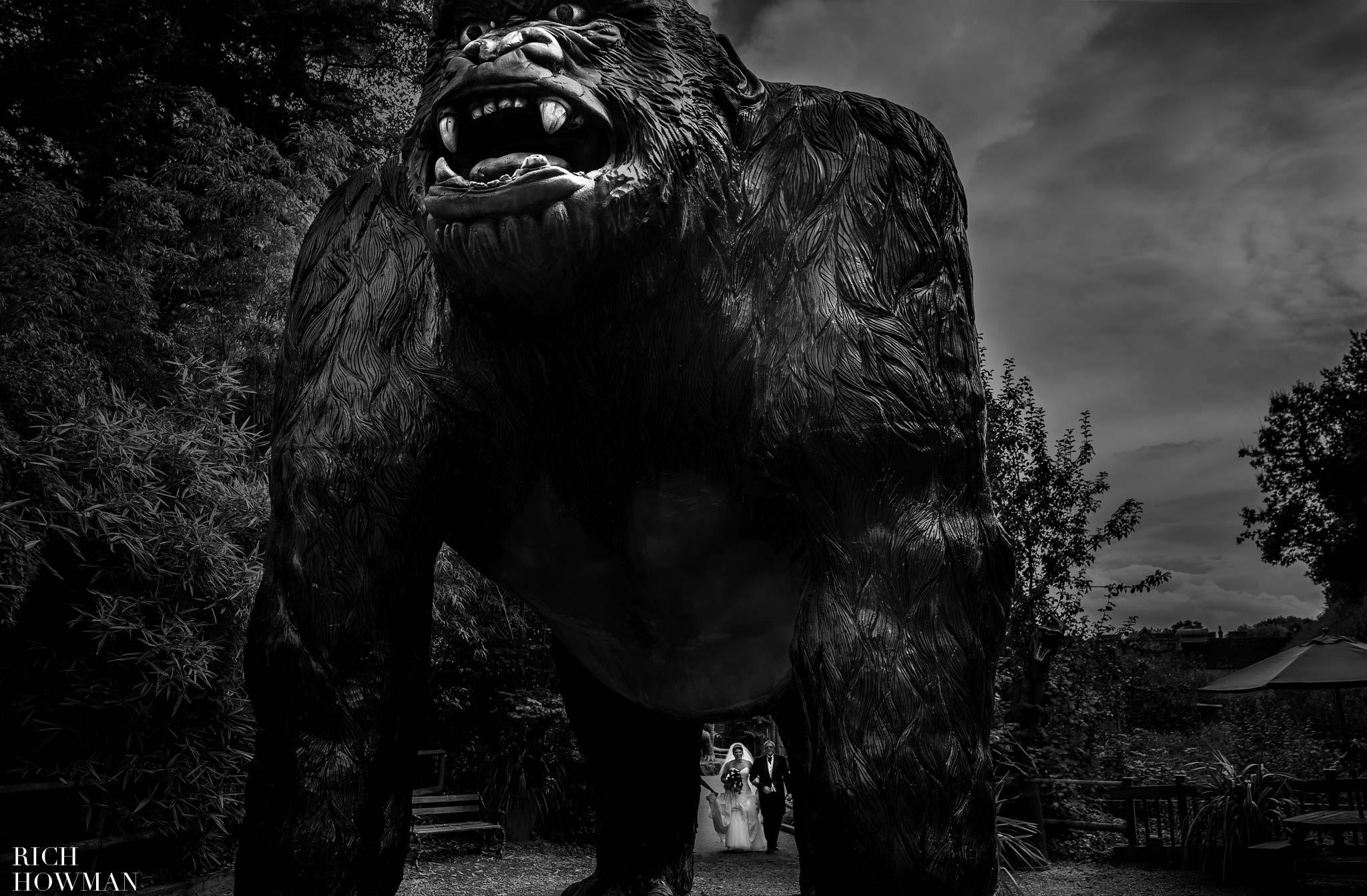 Wookey Hole Wedding. Massive Gorilla at a wedding at Wookey Hole Caves.
