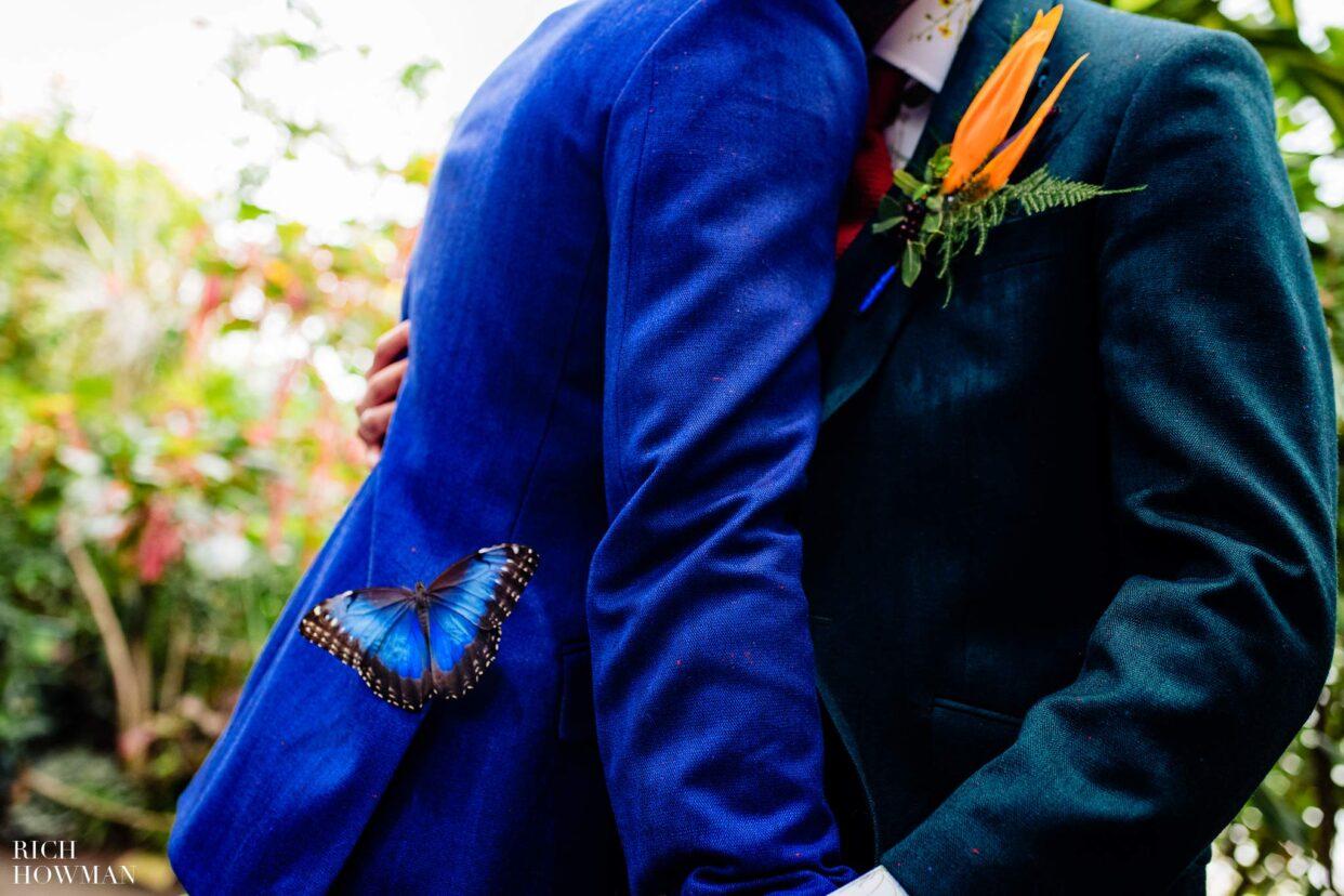 Bristol Zoo Wedding Photographers